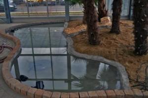Indoor Teich mit Teichcompound