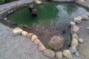 Bau naturnaher Teiche aus Teichcompound