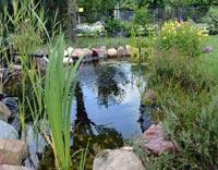 Ex-Gartenteiche-Teichpflege
