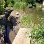 Schwimmteichfiltergraben