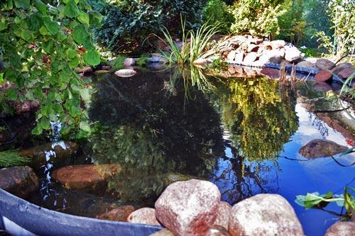 Gartenteich statt unheimlicher Sumpfteich