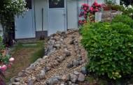 Teich- und Bachlaufsanierung