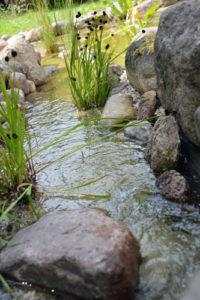 Wasserlauf-aus-Teichcompound