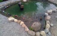 Bau naturnaher Teiche aus Spachtelmasse